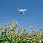 DJIが精密農業機「P4 Multispectral」発表 10月の「次世代農業EXPO」に出展へ